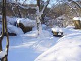 "Альбом Уманчанки - ""Суровая зима 2010 года"""