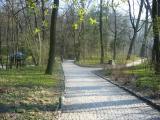 Альбом от Уманчанки - весна в Софиевке