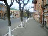 По древней улице Садовой
