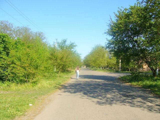 Улицы Христиновки