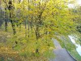 Осень в Софиевке, ч. 3 от Уманчанки. Октябрь - 2006