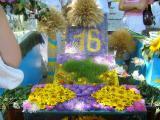Альбом от Уманчанки - выставка цветов в городе