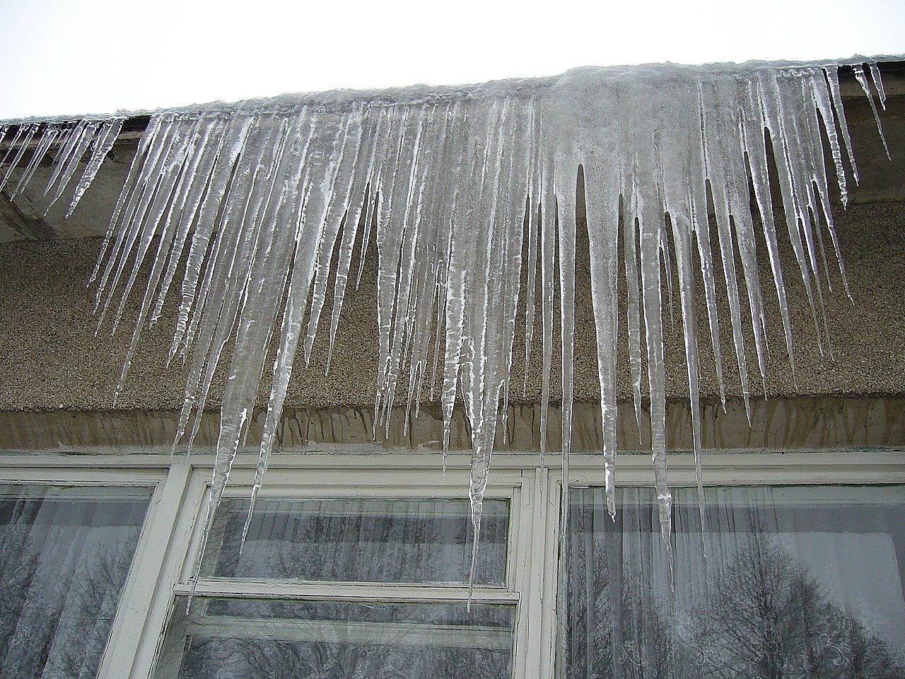 Слезки зимы