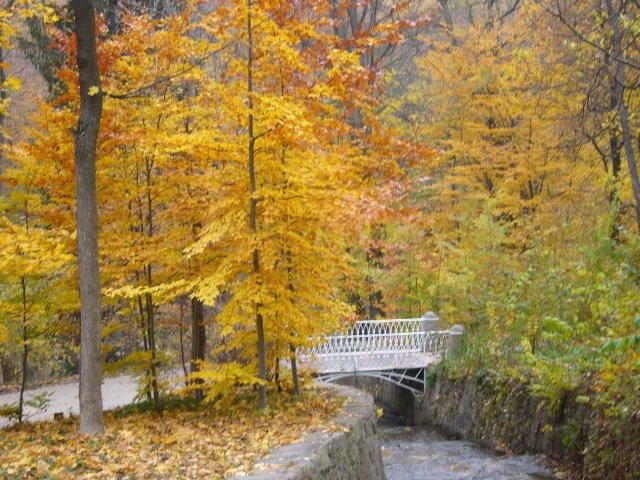 Осень в Софиевке
